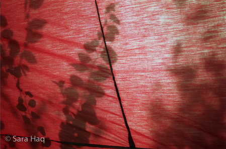 Red_market_shadow